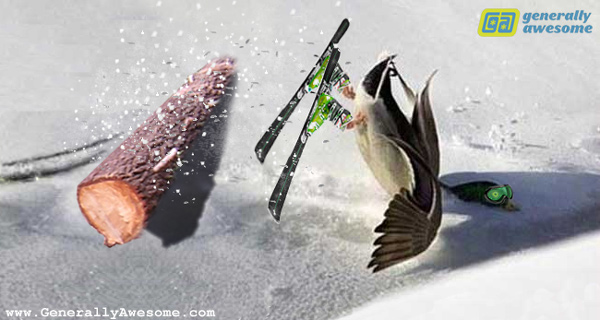 The photo here shows that ducks cannot ski.  Starting with a real photo of a duck having a crash landing in the snow, with the help of PhotoShop this has turned into a funny photo.
